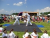 lovely-day-for-the-mens-karate-display