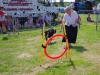 markree-dog-agility-at-sligo-county-agricultural-show