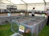 poultry-tent-set-up